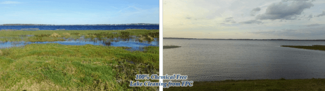 Lake Cleaning Florida, Lake Maintenance Florida, Lake Cleaning Companies Florida, Lake Maintenance Florida, Lake Maintenance Florida, Algae Control Florida, Lake Weed Control Florida, Florida Lake Cleaning