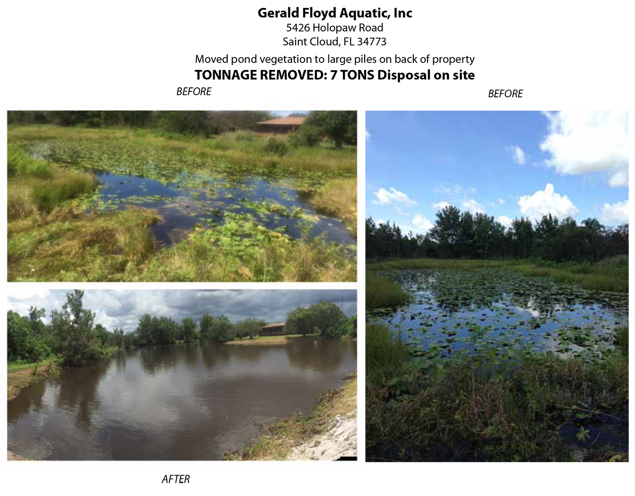 florida pond cleaning before and after eight