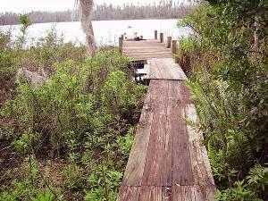 Lake Louisa State Park, Orlando, Florida