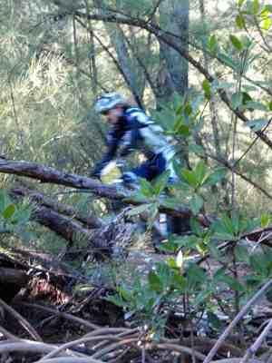 Oleta River Mountain Biking