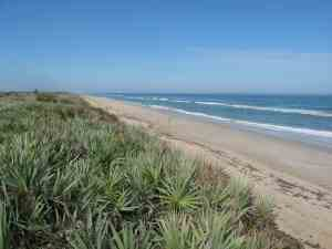 Apollo Beach in Canaveral National Seashore is one of Florida best beaches.