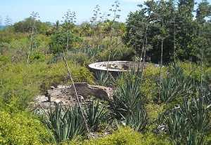 Florida history at Indian Key State Park