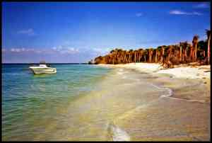 Cayo Costa is accessible only by boat or ferry.
