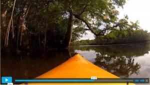 Video Kayaking the Loxahatchee