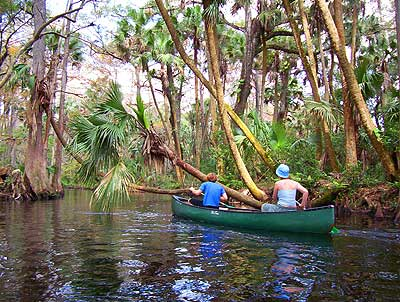 Loxahatchee River, Palm Beach County: Best paddling for miles
