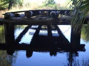 Loxahatchee River old bridge