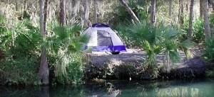 Wekiva Falls tent site