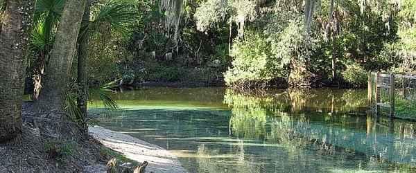 Lithia Spring Run at the Alafia River