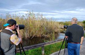 Photographers on Anhinga Trail in the Everglades