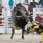 Jan. 20-22, 2017: Homestead Rodeo, where wild west meets the south in the tropics