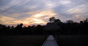 Sunset at Grassy Waters Preserve in West Palm Beach