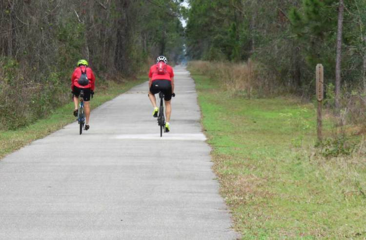 The Van Fleet Trail is one of the straightest, flattest, easiest-to-ride bike trails you'll ever find. (Photo: David Blasco)
