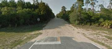 Forest Road 65 in Ocala National Forest