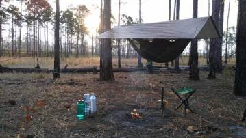 Hammock tent in Ocala National Forest
