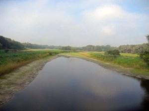 the myakka river at myakka river state park
