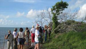 Birders at Florida Keys Birding and Wildlife Festival