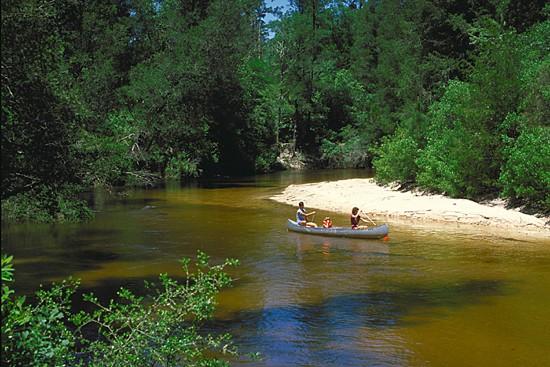 Paddlers at Florida's Blackwater River State Park