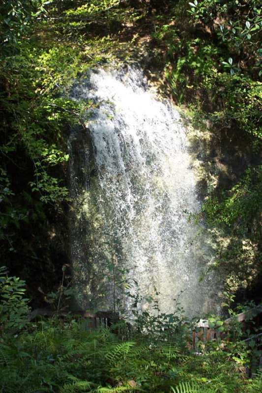 The falls at Florida's Falling Water State Park