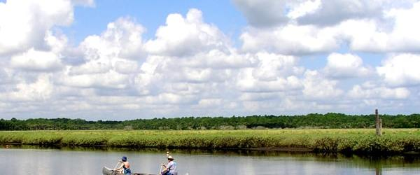 Canoeing on the Tomoka River