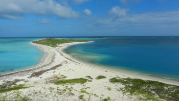 Bush Key is connected to Garden Key, home of Fort Jefferson, by a sandbar. It is the site of a large tern rookery. It is closed to visitors from April to September to protect nesting Sooty Terns and Brown Noddys.