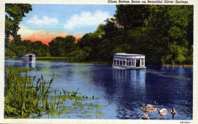 Silver Springs 1947 postcard
