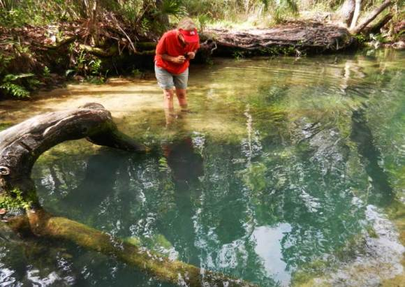 """Peering into the deep blue of """"The Crack,"""" a spring that is the origin of Baird Creek, a tributary of the Chassahowitzca."""