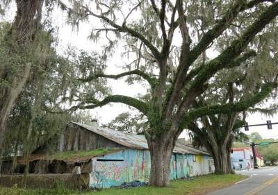 Little Floral City oozes Old Florida ambiance. It's midway on the Withlacoochee State Trail.