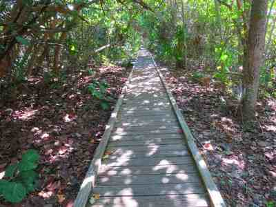 A boardwalk trail at Delnor-Wiggins Pass State Park