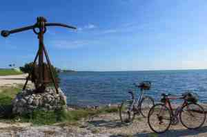 Scenery while biking the Florida Keys Overseas Heritage Trail in Islamorada.