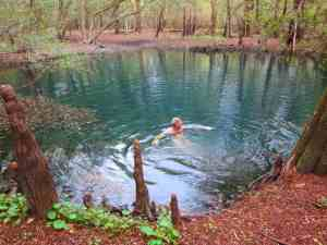 Little Otter Springs is a mile's walk back into the woods, and you are rewarded with a pristine pool of turquoise.