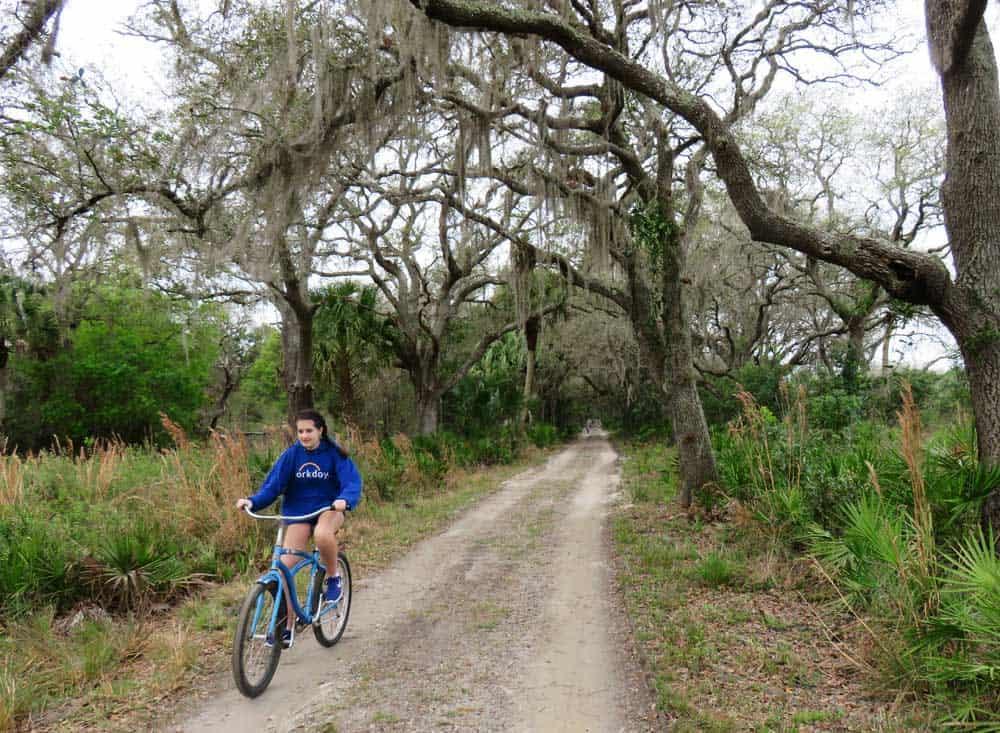 Myakka River State Park Sarasota For Wildlife Nature