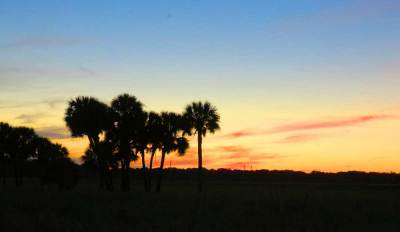 The sun sets over the prairie at Myakka River State Park.