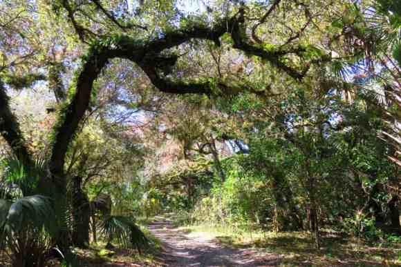 hiking/biking trail at Fort Center