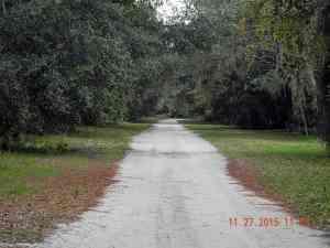 Multi-use road at Rock Springs Run State Preserve.