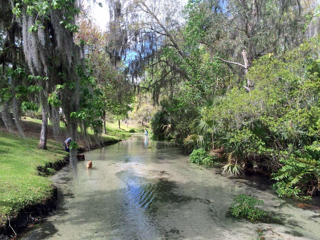 Wekiva Falls Fabulous Spring Campground And Best River