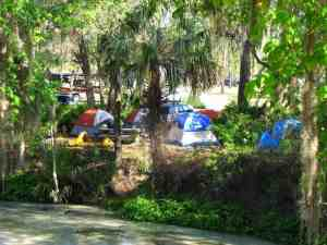 tent sites on the spring run at Wekiva Falls