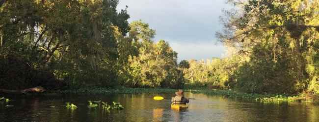 Wekiva River Basin's stunning beauty invites paddlers, campers, hikers and bikers