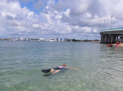 Snorkeling at Phil Foster Park on the Blue Heron Bridge in Riviera Beach.