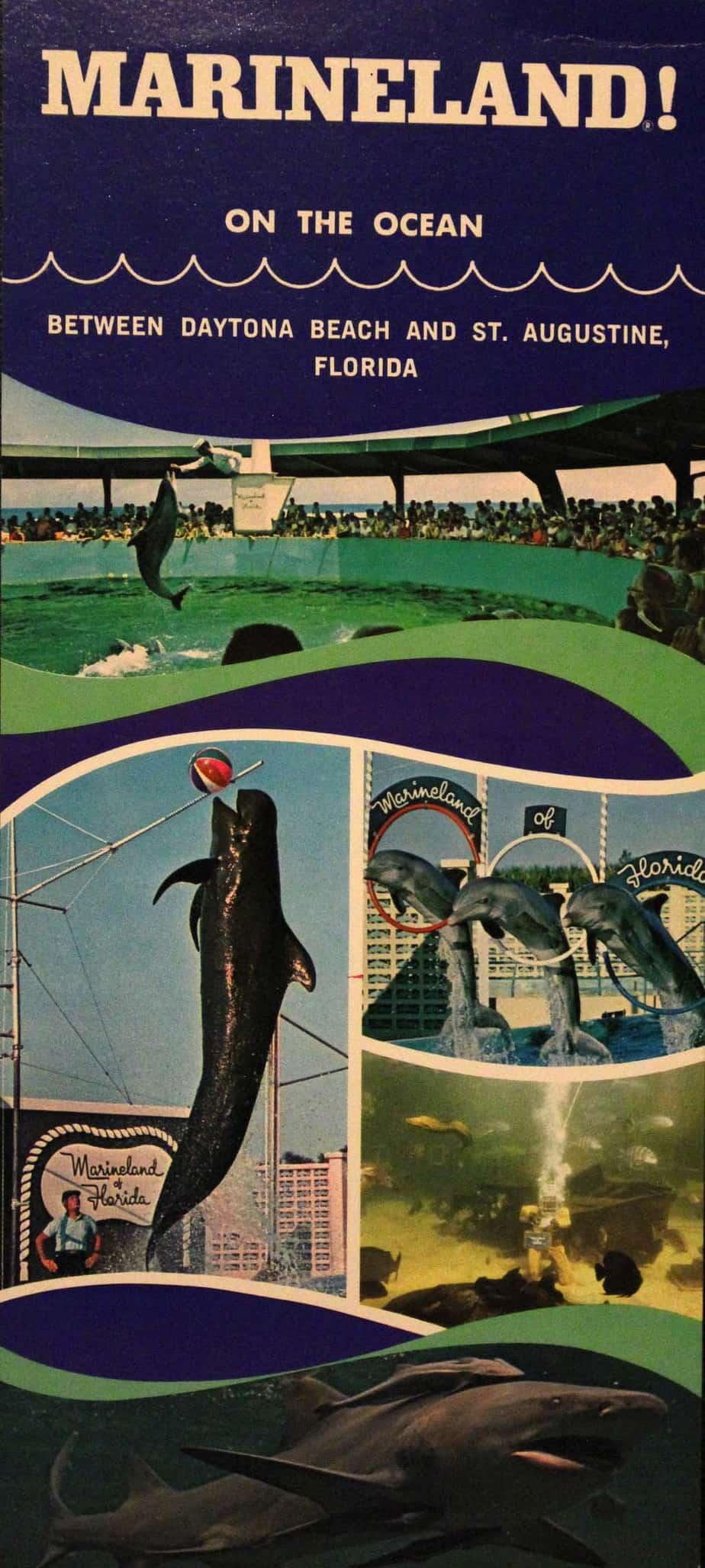Marineland A Legendary Oceanarium Continually Reinvents Itself Florida Rambler