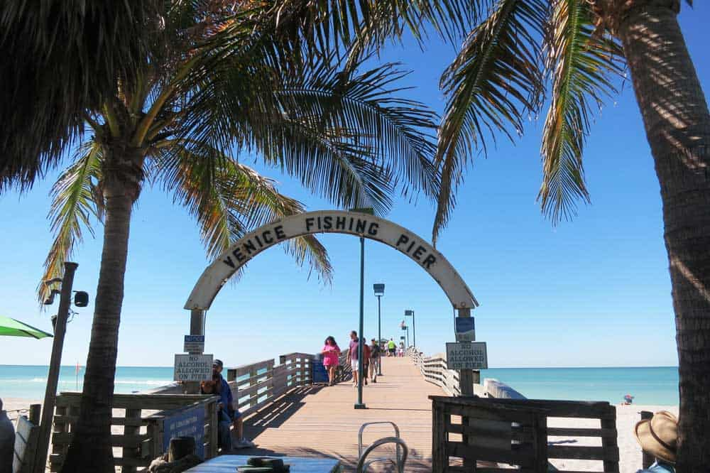 Beaches of venice hunt for shark 39 s teeth in the sands of for Sarasota fishing pier