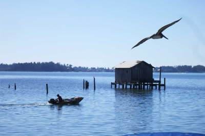 The view at Star Fish Company includes an iconic fish shack on stilts that appears on all the Cortez marketing materials. (Photo David Blasco)