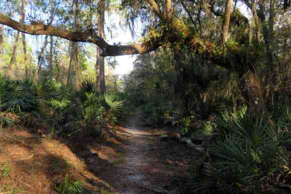 A trail at Little Manatee River State Park.. (Photo: Bonnie Gross)