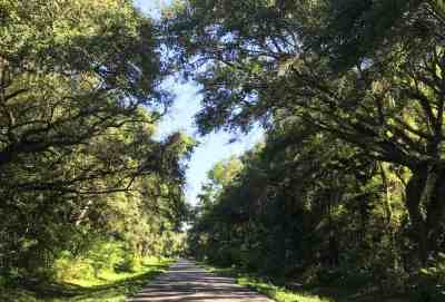 The roads around Lafayette Blue Springs State Park have little traffic and are very scenic. (Photo: Bonnie Gross)