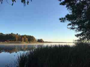 Lake Seminole from the campground at Three Rivers State Park
