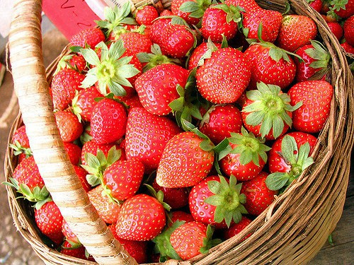 Florida Strawberry Festival: Feb. 28-March 10, 2019 in Plant City