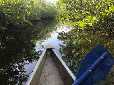 Kayaking among the mangroves at Garden Cove in Key Largo. (Photo: Bonnie Gross)