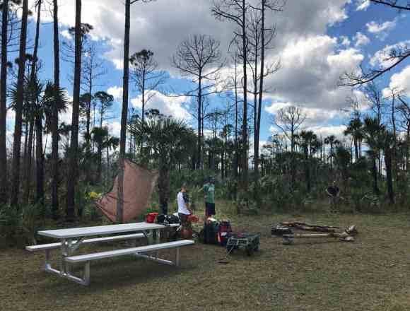 You can backpack into the Everglades along this trail and find a primitive campsite. (Photo: Bonnie Gross)