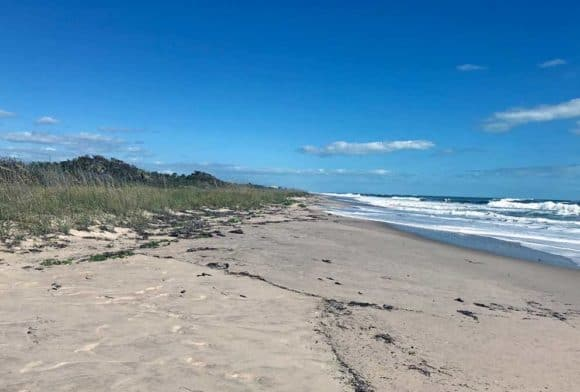 The beach at Avalon State Park in fort pierce.