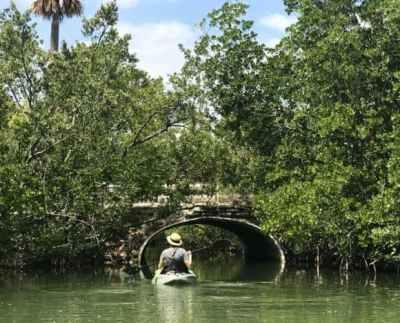 Oleta River State Park Like Island Getaway In Miami