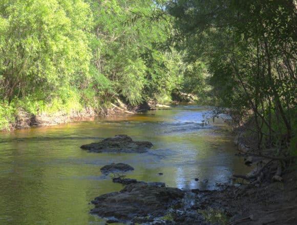 Alafia River at Alderman's Ford